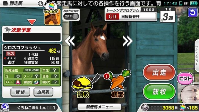 競走馬の調教